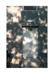 324517234619430146143 (Melissen-Ghost) Tags: fuji film fujifilm x100f classic chrome color street photography minimalism shadows light germany deutschland bayern regensburg industrial