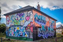 Graffiti (Snapdragon Lincs) Tags: banksykingstonpaintvandalism hul preston road council house estate yorkshire colourful abandoned empty bright owl tree face clever unique fascinating art
