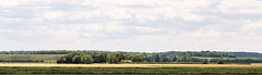 Trees and Hills (oandrews) Tags: 30dayswild canon canon70d canonuk field fields greatfen hiils landscape nature outdoors trees woodwaltonfen huntingdonshiredistrict england unitedkingdom gb