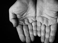 best-palmist-online (Life Positive) Tags: best palmist online palm reading expert