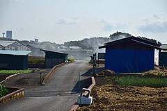 20180720_026_2 (まさちゃん) Tags: 煙 焚き火 プリンスペペ サカタのタネ 農道 ネギ 空 雲