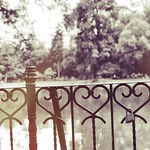 Hey kid, love is for losers now Stupid kid, you're a loser now #loveisforlosers #keylock #heart #nature thumbnail