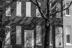 If Animal  Trapped... (J.Lynn Photography) Tags: baltimore streets notrespassing abandone rowhouses bw