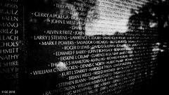 Vietnam Veterans Memorial, Washington, D.C. (georgechamoun1984) Tags: washingtondc usa america unitedstates districtofcolumbia dc washington nationalmall vietnamveteransmemorial memorial vietnam