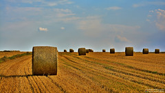 Big rollers (Szymon Simon Karkowski) Tags: outdoor roll field sky cloud nature landscape hay harvest cultivation summer silesian voivodeship gliwice poland nikon d7100