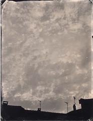 (Troisième type) Tags: collodion collodionhumide wetplate busch pressman 4x5 plexitype lelabodutroisieme ambrotype