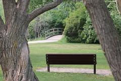 HBM Happy Bench Monday (davebloggs007) Tags: hbm happy bench monday confederation park calgary 2018