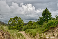 Grand Mere Dunes Hike (mswan777) Tags: trail hike forest white gray 1855mm nikkor d5100 nikon green cloud sky michigan stevensville landscape scenic nature outdoor tree wood grass dune sand