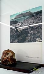 Marcelo Moschetta (Wilson Rodrigues / Fotógrafo - Santo André-SP) Tags: marcelo moschetta a história natural e outras ruínas