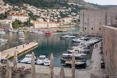Dubrovnik (tamson66) Tags: dubrovnik croatia port old town