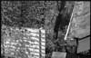 looking down, forest, hillside, early spring, North Asheville, NC, FED 4, Industar 26 50mm f-2.8, early April 2018 (steve aimone) Tags: guardrail roof rooftop lookingdown foilage spring sunlight northasheville northcarolina fed4 industar2650mmf28 aristaedu200 ilfordilfosol3developer soviet rangefinder 35mm 35mmfilm film blackandwhite monochrome monochromatic gutter