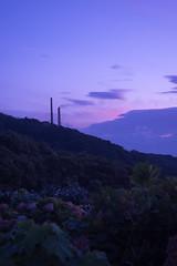 P7214657 (kunmorita) Tags: star 星 海 空 夜空 夜間撮影 sea sky night 夕焼け マジックアワー magic hour 黄昏