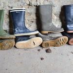 213 -- Collection of wellies -- Rubberboots -- Gummistiefel -- Regenlaarzen thumbnail