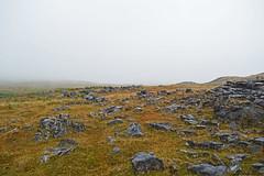 Walking into cloud (cmw_1965) Tags: cloud clouds cloudy cloudscape mist fog drizzle brecon beacons powys carmarthen fan abercrave abercraf dan yr ogof swansea valley wales welsh