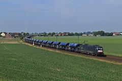 182 598 (René Große) Tags: eisenbahn train rail railways railroad güterzug lok lokomotive elok taurus es64u2 182 siemens mrce haste niedersachsen deutschland germany