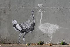Ardif + Matt Thieu_2783 rue Charles Delescluze Paris 11 (meuh1246) Tags: streetart paris ardif mattthieu ruecharlesdelescluze paris11 autruche oiseau animaux coeur