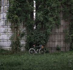 Smiarowski Farms. (koperajoe) Tags: vintagetrek ruraldecay bicycle silos cycloourisme randonneur ivy farm 650b westernmassachusetts newengland velo