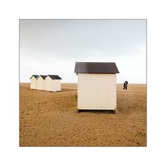 Variations sur la plage (2). (Scubaba) Tags: europe france normandie couleurs colors cabines huts plage beach sable sand ciel sky fourmis ants cabinesdeplage beachhuts