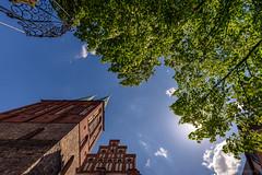 St. Nicholas' Church (fbkphotography) Tags: berlin blue deutschland germany nikolaikirche nikolaiviertel sky sommer stnicholaschurch summer tree 15mm