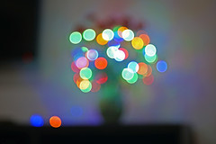 The bubbles of Flower (Abra Abr) Tags: sony sonyalpha sonya6000 dslr bokeh bubble colourful red green yellow flower light 50mm vintage lens nikon nikkor