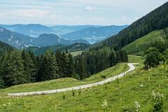Walks on Zwoelferhorn-E7050089 (tony.rummery) Tags: austria em10 landscape mft meadows microfourthirds mountain omd olympus path stgilgen tree zwoelferhorn gemeindesanktgilgen salzburg at