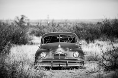 She Was Only a Waitress in a Highway Cafe (Thomas Hawk) Tags: america newmexico route66 usa unitedstates unitedstatesofamerica abandoned auto automobile bw car junkyard fav10 fav25 fav50 fav100