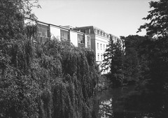 op - river leam (johnnytakespictures) Tags: olympus pen ee3 ferrania filmferrania p30alpha p30 blackandwhite bw panchromatic film 35mm analogue leamingtonspa leamington warwickshire river canal stream water leam nature natural tree trees fern willow building architecure period landscape