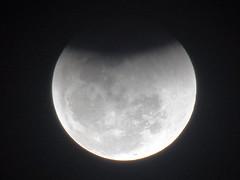 DSC02801 Eclipse Lunar Em 27-07-2018 Em Nova Odessa SP (familiapratta) Tags: sony dschx100v hx100v iso100 natureza lua céu nature moon sky