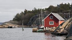 Hvalerkysten 1.5, Østfold, Norway (Knut-Arve Simonsen) Tags: asmaløy hvaler norge норвегия norway noriega norwegen norvegia norvège नॉर्वे 挪威 ノルウェー நோர்வே νορβηγία sydnorge sørnorge østlandet glomma oslofjorden østfold norden scandinavia скандинавия э́стфолл фре́дрикстад гло́мма ослофьорд