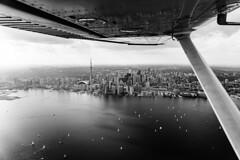 Taking It In (BW) (Michael Muraz Photography Aerials) Tags: 2018 bw blackwhite canada northamerica ontario toronto world aerial aerialphotography lake lakeontario monochrome plane skyline ca
