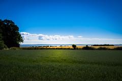 Swedish summer on the island of Ven (Maria Eklind) Tags: view moln ö countryside ven landsvägen himmel island sky outdoor hven field nature vy skånelän sverige se