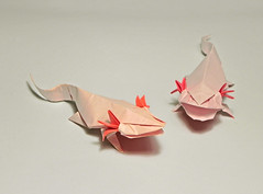 AXOLOTE (Origami Roman) Tags: origami axolote salamander romandiaz