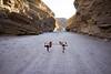 Dancers' split (Foodo Dood) Tags: sony a7ii 35mm zeiss splitmountainroad anzaborrego dancerspose yoga angels