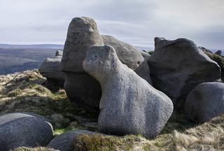 Seal Edge Rocks