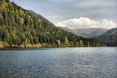 Vosges mountains (denismartin) Tags: denismartin vosgesmountain vosges france lorraine grandest epinal lake longemer xonrupt tree spring sky cloud hdr hohneck
