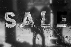 SALE 50% (ro_ha_becker) Tags: analogue film monochrome zwartwit schwarzweiss biancoenero blancetnoir blackandwhite blancoynegro
