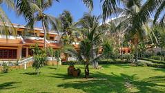 Phu Hai Resort & Spa 4**** (Rene Jacobs - Picsandtravel) Tags: vietnam indochina asien beach strand hotel garden garten flowers blumen meer ocean ozean palme palmen sundowner sunset