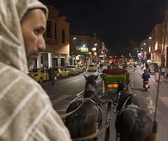Night Time Carriage Ride (jarhtmd) Tags: africa morocco marrakesh canon eos70d animal night transportation