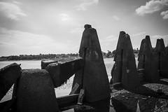 Cramond Island Causeway (Herdstar) Tags: edinburgh forthroadbridge forth railway bridge