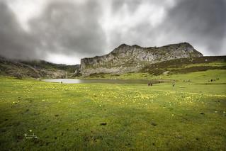 Lago Ercina  ( Covadonga ) Astutias.
