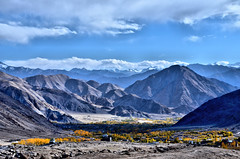 Ladakh in Autumn (pallab seth) Tags: landscape autumn fall nature colour highway kashmir india ladakh valley jammukashmir color mountains himalayas nubravalley