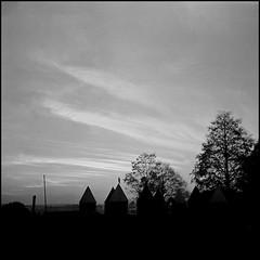 Cielo (mavricich) Tags: agfa foma monocromo film noche calle plaza monocromático misiones monochrome isolette parque hierba árbol cielo atardecer nubes negro nublado naturaleza