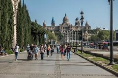 20180420-17_07798 (mathieujoo) Tags: printemps2018 barcelone barcelona catalunya espagne es