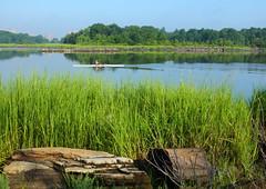 Morning at the Lagoon (Lojones13) Tags: morning rowing boat summer water canal grass eosm exercise bronx newyorkcity kayak kayaking