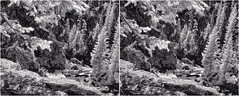 Centennial Falls Gorge II (turbguy - pro) Tags: 3d stereo crosseye infrared laramie wyoming medicinebownationalforest bw