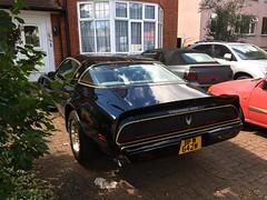 immaculate 1981 Pontiac TransAm 5Litre V8 (mangopulp2008) Tags: immaculate 1981 pontiac transam 5litre v8 gm general motors american muscle