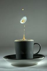 Over-zealous Barista,... (Wim van Bezouw) Tags: sony ilce7m2 drop coffee cream highspeed splah drink plutotrigger freezebox
