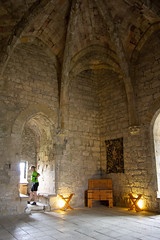 The Hall (alasdair massie) Tags: stone france vaulting castle cathar languedoc puivert chateau