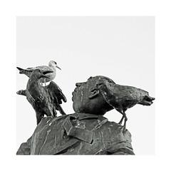 Les oiseaux (Yvan LEMEUR) Tags: alfredhitchcock lesoiseaux dinard côtedemeraude illeetvilaine goéland statue sculpture escultura bretagne extérieur hitchcock nb noiretblanc bw blackandwhite