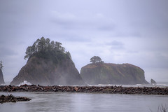 IMG_4248_Olympic NPS (Alex Hsieh (椰子人)) Tags: ç´è² olympicnationalpark nationalpark nps seattle washingtonstate wa roadtrip travel canon canon6d 2016 thanksgiving 6d